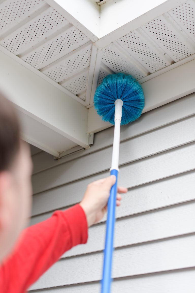 Spider Web Removal - Alpha Pest Solutions